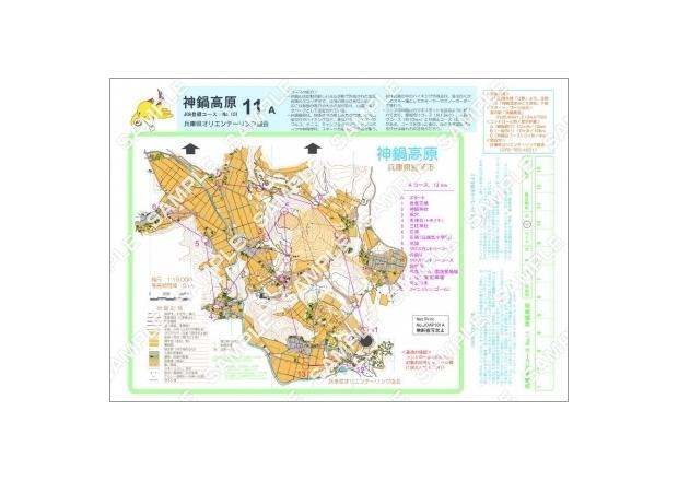 200円(1ページ)